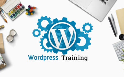 Remote WordPress Training/Consulting