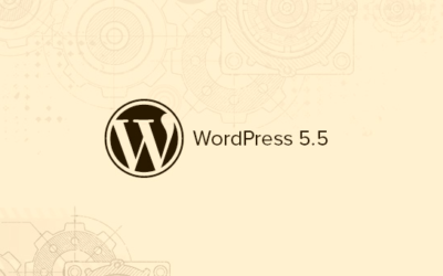 What's New in WordPress 5.5 ??